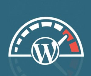 How to Speed Up WordPress_ver2